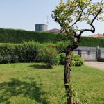 villa-bifamiliare-vendita-burago-93*