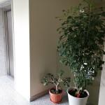 bilocale-vendita-agrate-brianza-72