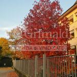 vendita-box-verderio-grimaldi-32